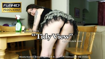 tidyview-preview-small
