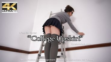collegeupskirt-preview-small