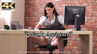 wankassistant-preview-small
